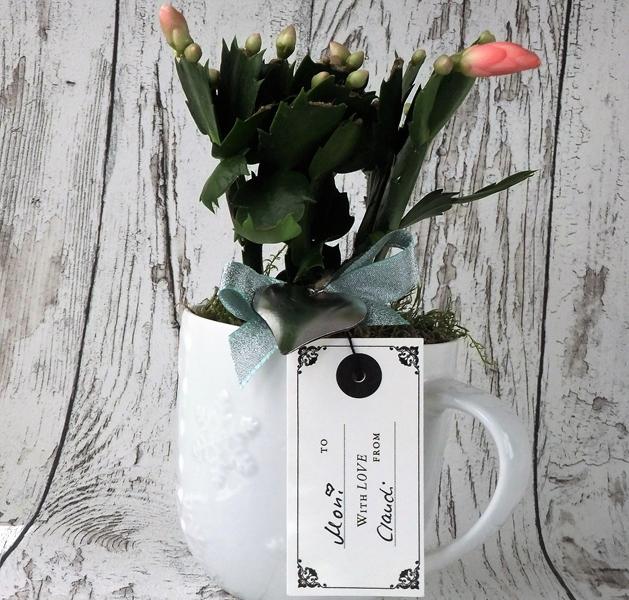 kleines Geburtstagsgeschenk als Blumentopftasse