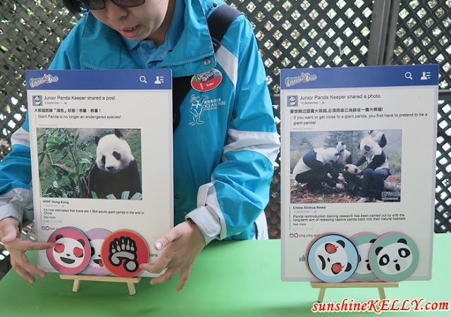 Meet Le Le, The Giant Panda @ Ocean Park Hong Kong