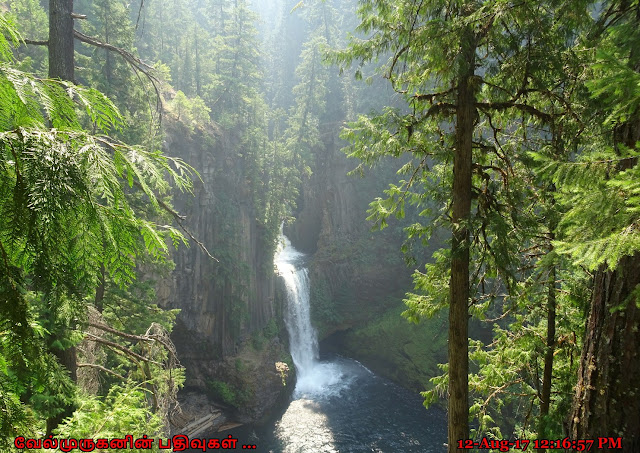 Toketee Falls Near Crater Lake