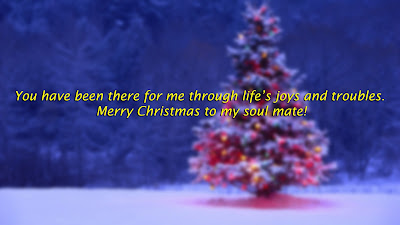 You have been there for me through life's joys and troubles. Merry Christmas to my soul mate!