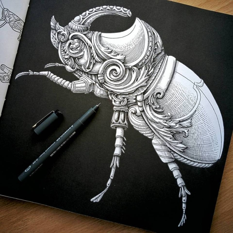 11-Rhinoceros-Beetle-Alex-Konahin-Ornate-Details-in-Animal-Drawings-www-designstack-co