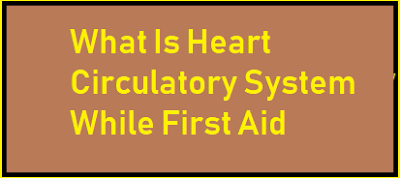 What Is Heart Circulatory System While First Aid