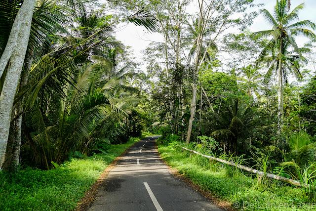 Région Kéliki - Ubud - Bali