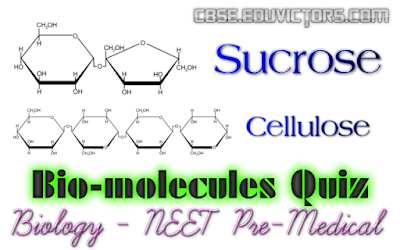 NEET Pre-Medical Biology Quiz: Biomolecules (#NEETQuiz)(#eduvictors)