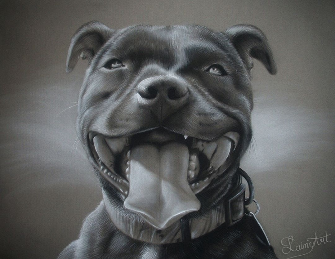 07-Pit-Bull-with-a-Big-Smile-Alaina-Ferguson-Animal-Portraits-Cats-Dogs-and-a-Guinea-Pig