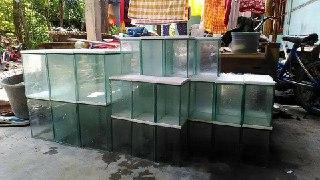 Harga Jasa pembuatan akuarium murah