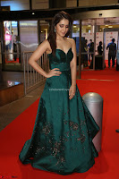 Raashi Khanna in Dark Green Sleeveless Strapless Deep neck Gown at 64th Jio Filmfare Awards South ~  Exclusive 074.JPG