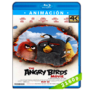Angry Birds: La película (2016) 4K Audio Trial Latino-Ingles-Castellano