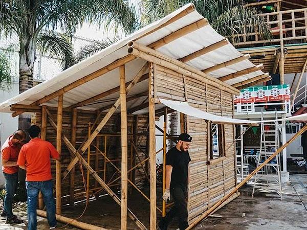 Edificarán casas de bambú para damnificados por 19:S, en Puebla