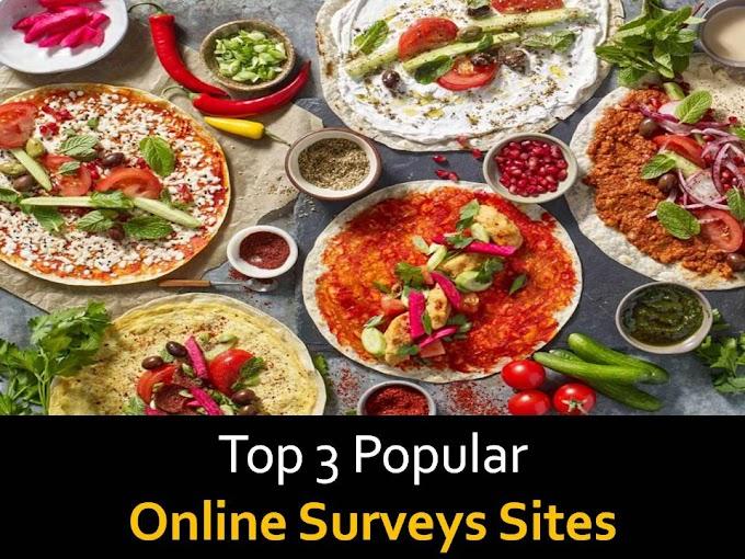 Top 3 Popular Online Surveys sites