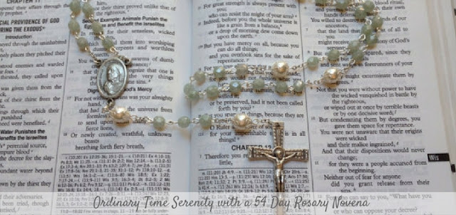 http://catholicmom.com/2016/10/10/preparing-hearts-advent-special-rosary-novena/