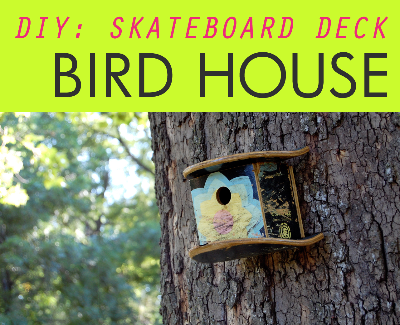 hey jen renee: diy: skateboard deck birdhouse