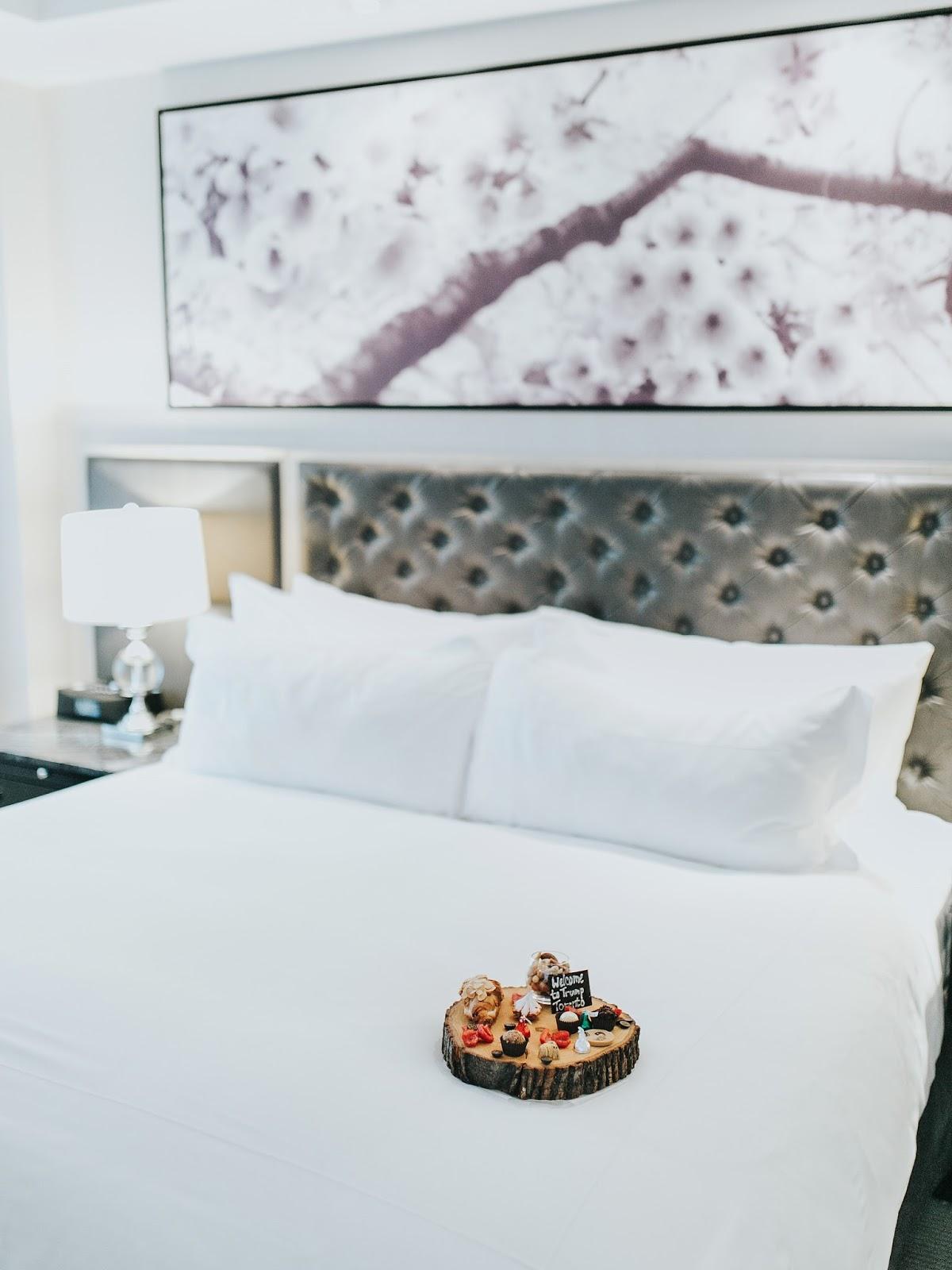 Bijuleni - Pet Friendly Hotel for a Cavalier King Charles Spaniel