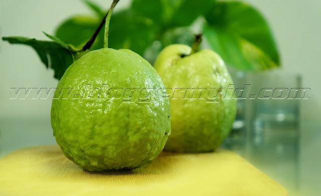 Jambu biji merupakan tanaman yang bukan berasal dari Indonesia melainkan tanaman yang berasal dari negara Meksiko, Amerika Selatan. Akan tetapi saat ini buah yang memiliki banyak biji telah banyak dibudidayakan di Indonesia yang memiliki iklim tropis.    Buah yang memiliki nama latin guava ini banyak dimanfaatkan untuk menjaga kesehatan dan untuk kecantikan.    Sebelum membahas manfaat buah jambu biji, berikut adalah beberapa kandungan yang dimiliki buah jambu biji ini adalah sebagai berikut:    1. Anti Oksidan Anti oksidan merupakan zat yang mampu memperlambat atau menangkal terjadinya oksidasi oleh molekul lain atau bisa dikatakan sebagai zat yang mempu menangkal radikal bebas. Radikal bebas dapat menyebabkan terjadinya kerusakan pada sel-sel tubuh seperti sakit jantung dan ginjal.    Ternyata kandungan anti oksidan yang tinggi tidak hanya terdapat di dalam daging buahnya saja melainkan pada daunnya juga, oleh sebab itu jambu biji sangat baik untuk menjaga kesehatan tubuh.    2. Fitonutrein Fitonutrein adalah zat yang bertanggung jawab untuk memberikan rasa, warna dan aroma pada sayur dan buah. Fitonutrein paling banyak didapatkan dari sayur dan buah-buahan yang memiliki warna yang mencolok seperti buah jambu biji, strawberry, atau buah naga.    Kandungan manfaat buah jambu biji ini bisa diambil dari kandungan fitonutrein yang terkandung di dalamnya, yang sangat baik untuk kesehatan mata dan menjaga organ prostat.    3. Vitamin A Manfaat buah jambu biji bisa didapatkan dari kandungan karetenoid yang ada di dalamnya, yakni vitamin A. Buah dengan warna yang cantik dan mencolok biasanya memiliki kandungan keretenoid yang tinggi dna memiliki kandungan vitamin A yang tentu saja sangat baik untuk menjaga kesehatan mata.    Selain menjaga kesehatan mata, manfaat vitamin A adalah dapat mencegah penyakit jantung, menjaga kelembutan kulit dan meningkatkan system kekebalan tubuh serta menjaga sel-sel di dalam tubuh.    4. Vitamin C Menurut penelitian yang dilakukan terhadap 