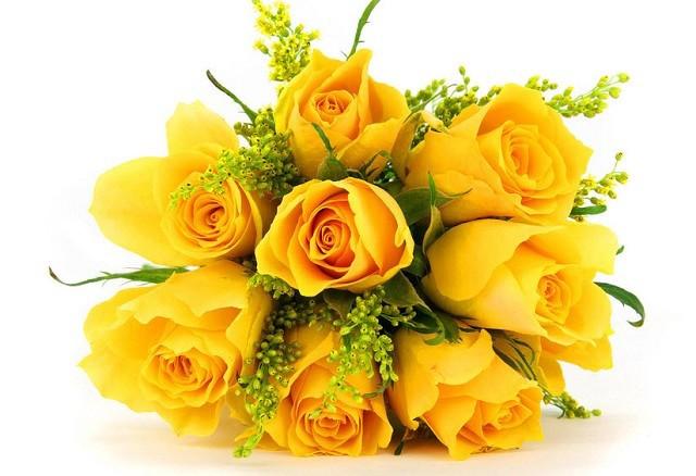hoa sinh nhat dep nhat 5
