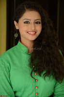 Geethanjali in Green Dress at Mixture Potlam Movie Pressmeet March 2017 039.JPG