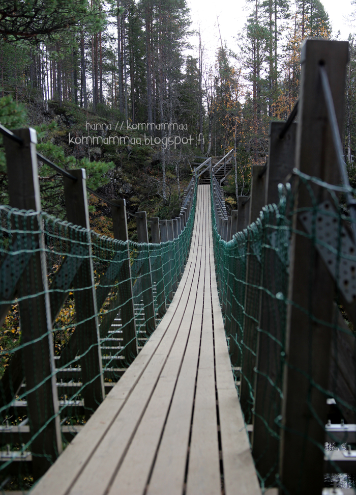 pieni karhunkierros oulanka oulangan kansallispuisto ruska riippusilta