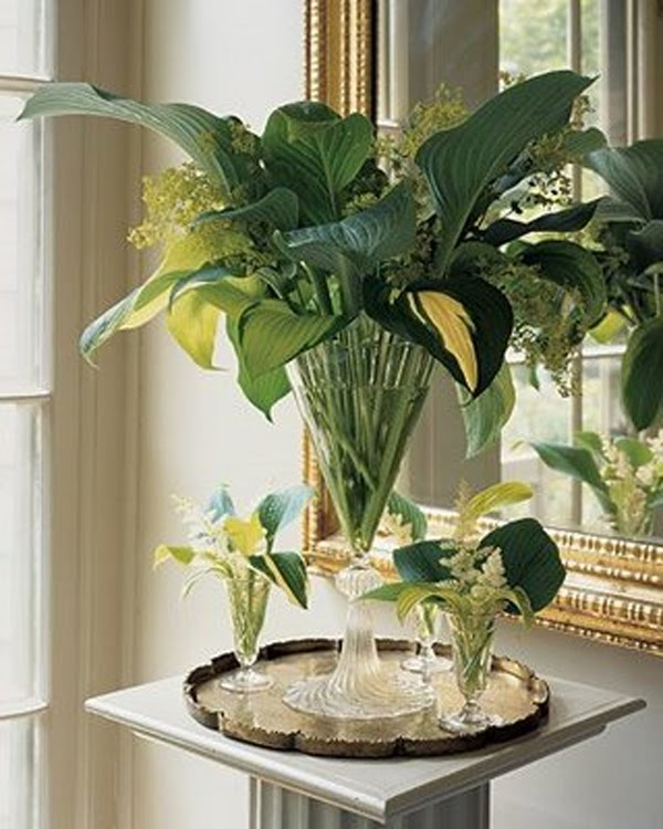 Plant Pot With Dome Home Decor
