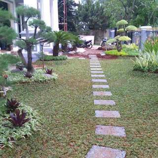 Tukang taman di Bogor Raya