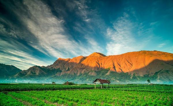 Desa Sembalun Lawang ketinggian 1200 meter dpl