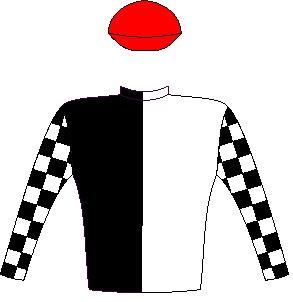 Hat Puntano - Silks - Horse Racing