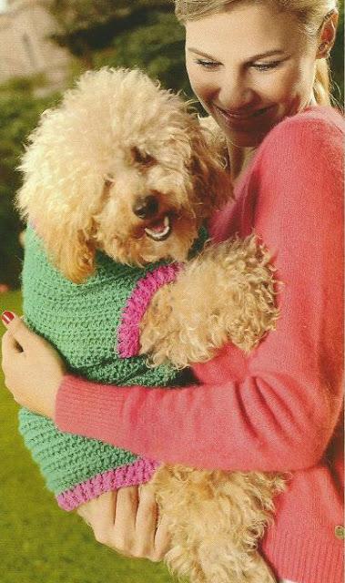 Pulóver para Perro a Dos Agujas