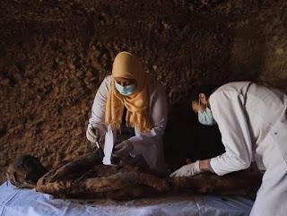 """الفئران المحنطة والقطط والطيور الموجودة في المقبرة المصرية """"الجميلة"""""""