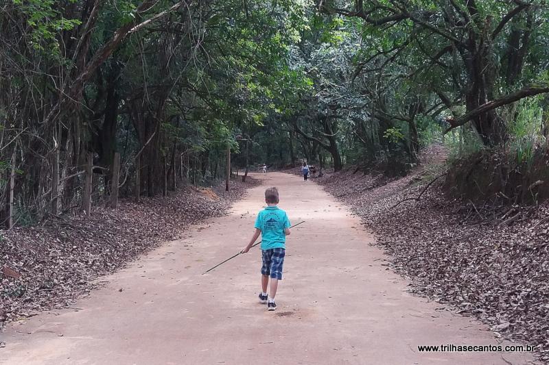 Passeios com Crianças no Interior de São Paulo