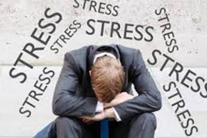 Fungsi Hormon yang Muncul Saat Anda Stres