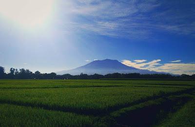 foto pemandangan gunung lawu