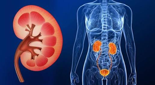 10 Habits That Ruin Your Kidneys