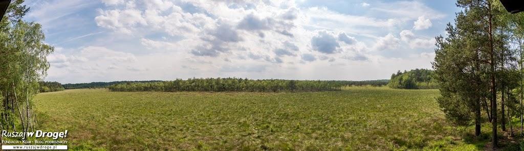Panorama z Wieży Widokowej na Durne Bagno