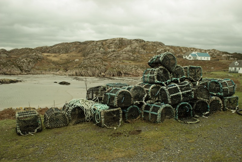 lobster crab pot isle of mull island fishing scotland