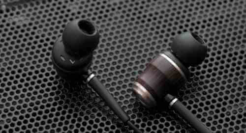 Best Wood IEMs: JVC KENWOOD FX850 Best Bass Earbuds