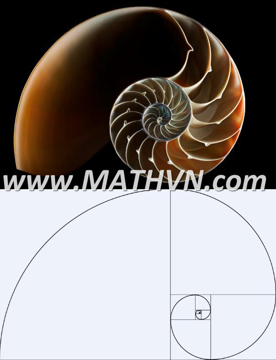 day so fibonacci