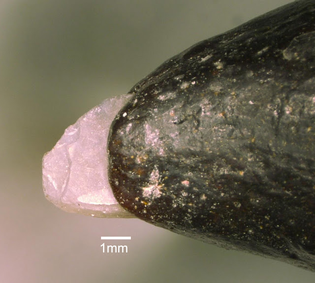 World's smallest palaeolithic ornamental beads unearthed in China