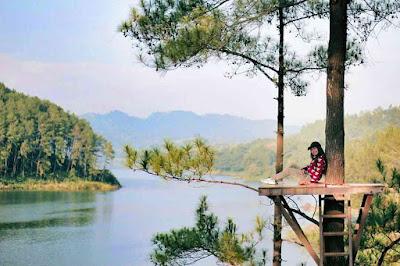 Spot Rumah Pohon Ranu Gumbolo