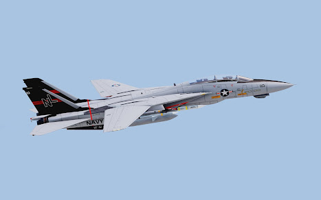 Arma3用F-14 Tomcat MODのVF-51 Screaming Eagles