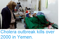 http://sciencythoughts.blogspot.co.uk/2017/10/cholera-outbreak-kills-over-2000-in.html