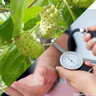 Khasiat Manfaat Mengkudu Untuk Obat Hipertensi Darah Tinggi Dan Cara Mengolah Kandungan