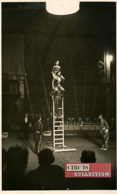 spectacle les 4 Sawatha échelles libres cirque Knie