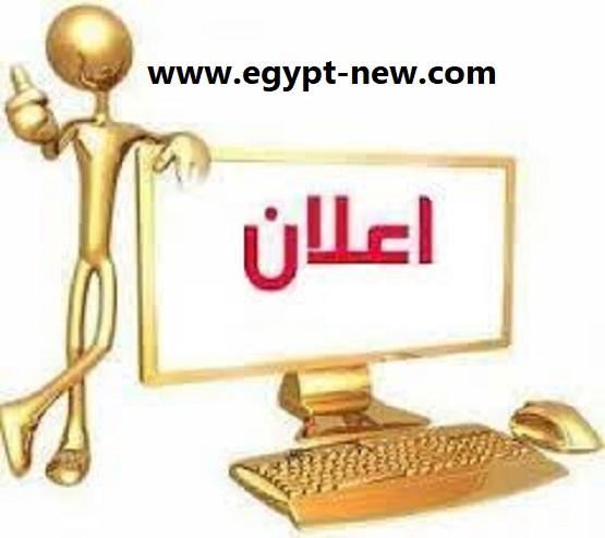 لطلب الإعلان في الموقع يمكنكم التواصل مع شركة غاوي اخبار: