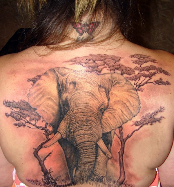 vemos el tatuaje de elefante en la espalda
