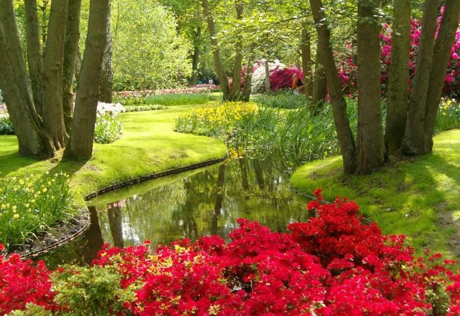 World's Largest Flower Garden - Keukenhof Netherlands