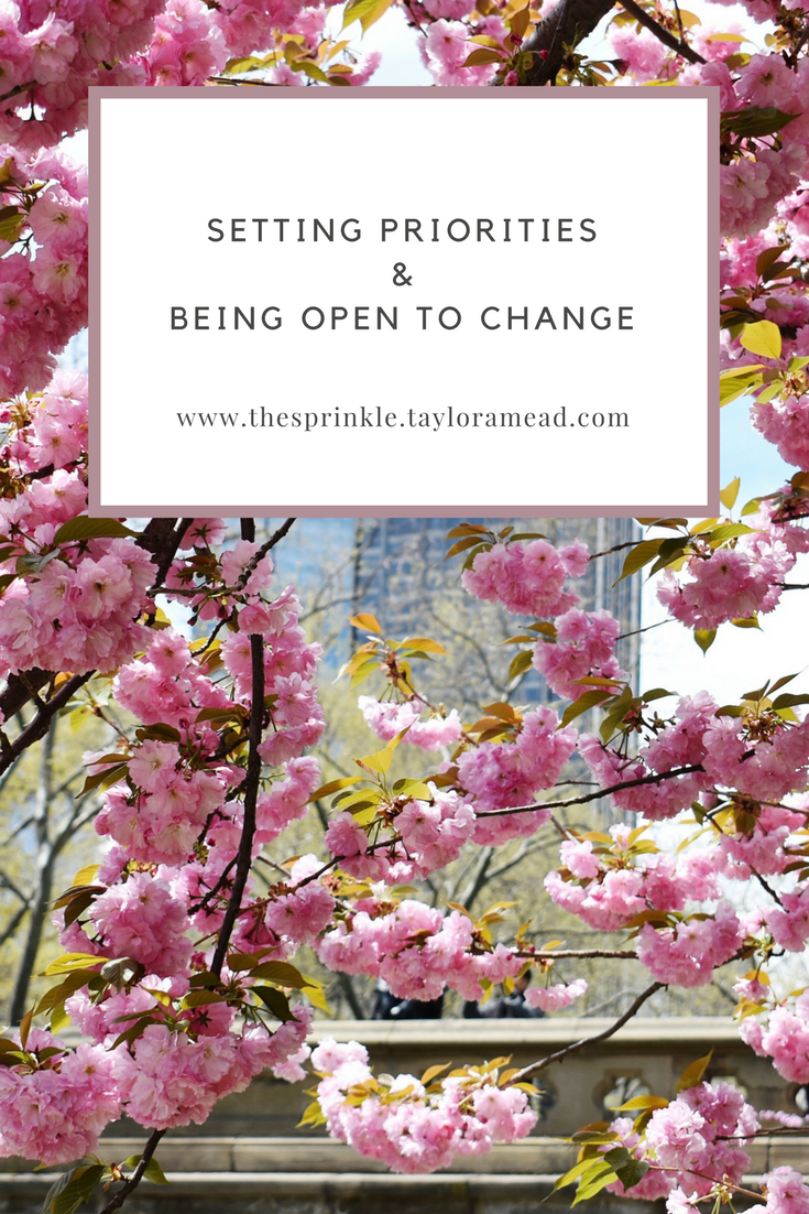 Setting Priorities and Being Open to Change - The Millennial Sprinkle