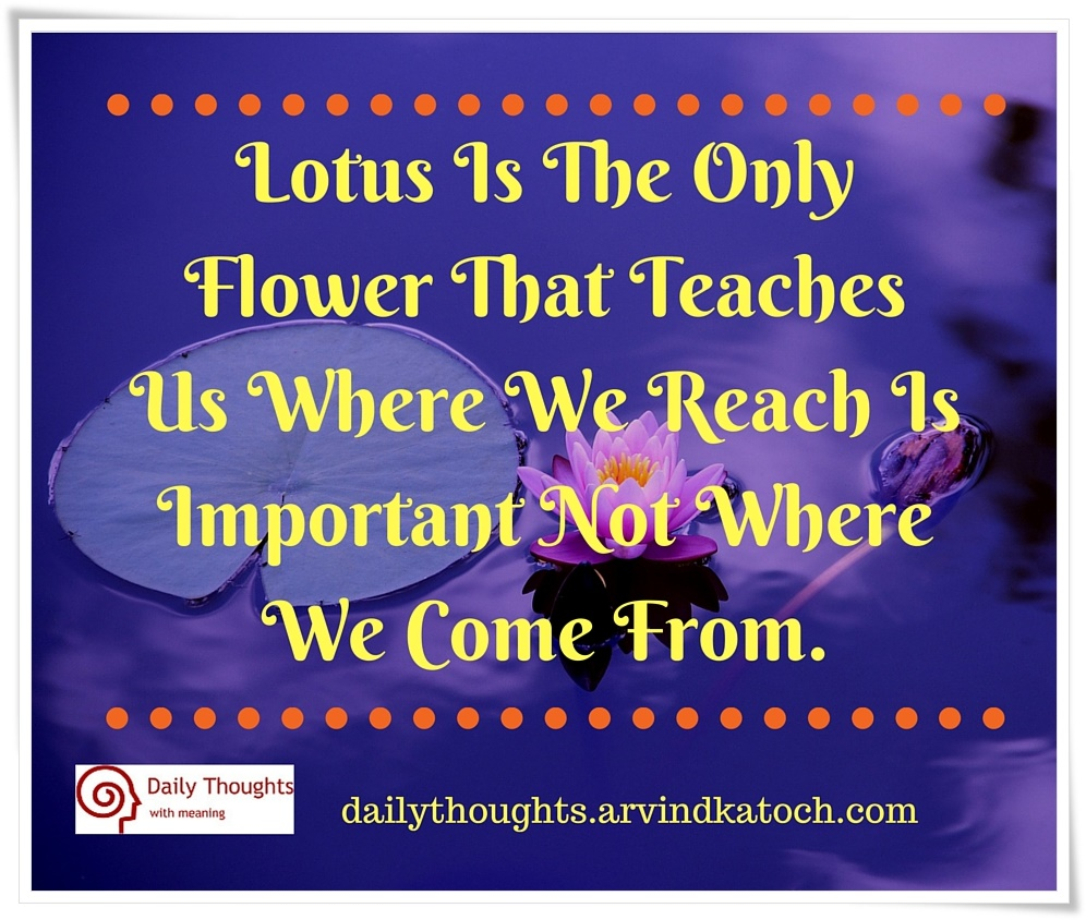 Lotus Is The Only Flower That Teaches Us Daily Thought Image With