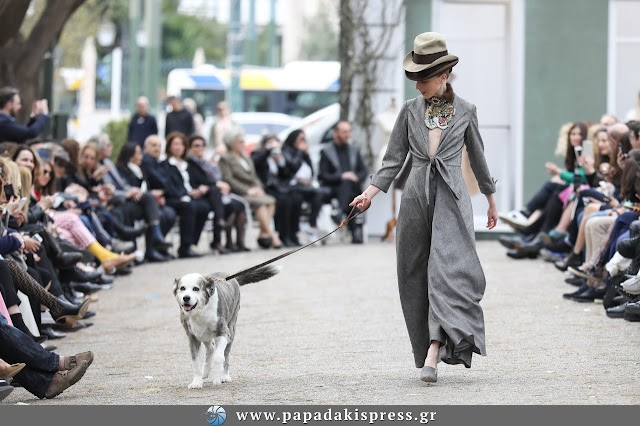 Fashion talks...Verouska, in loving memory of a beloved stray