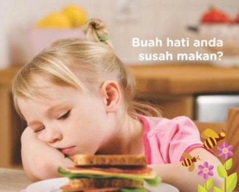 5 Penyebab Anak Susah Makan Beserta Solusinya