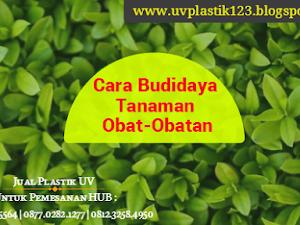 Manfaat Plastik Uv - Cara Budidaya Flora Obat Obatan