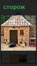 около входа лежат собаки в качестве сторожей